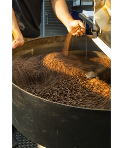 Local Coffee Roasters, Amavida Coffee