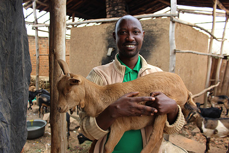There's more than one way to fairly compensate Burundi coffee farming families; like goats for instance!