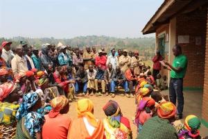 Sustainable Burundi coffee from Nemba