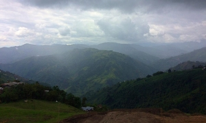 Colombia Coffee Fields an mountains.