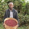 Fair Trade coffee farmer with his harvest from Ethiopia's Idido Cooperative