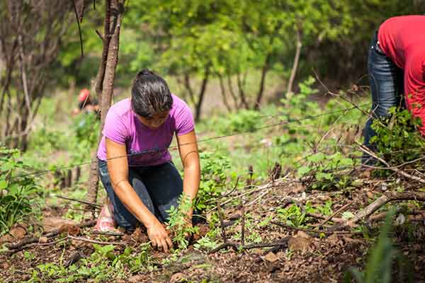 Woman planting trees for climate change as part of reforestation project in partnership with Taking Root.