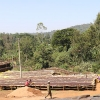Best Coffees from Ethiopia processing on drying beds at Aricha in Idido.