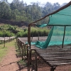 Drying beds seen at the organic coffee cooperative Ethiopia Idido Aricha