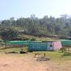 Organic Ethiopia Idido Aricha Specialty Coffee exporting cooperative