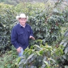 Coffee farmer, Oscar Omar Alonzo, seen at origin on his land in Honduras among organic crop.