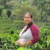 Organic Coffee Farmer and member of COMSA Cooperative, Karla Portillo